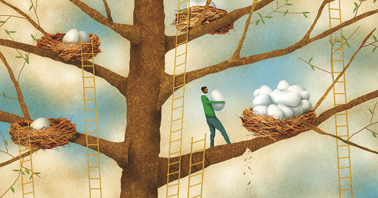 An illustration of a man putting eggs in different nests in a tree shows the concept of asset allocation.